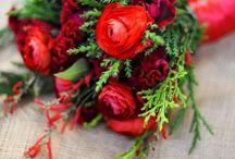 Christmas Weddings / by Cactus Flower Florists