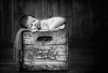 {Evan's Newborn Picture Inspiration} / by Ashley Lyle