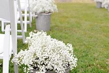 Wedding decor / by Jessicia Strong