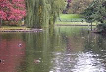 Boston - New England / by Pat Garipay