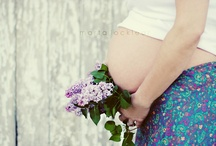 Maternity Sessions / by Jessica Case Torres