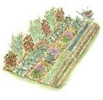 Our veggie garden Ideas  / by Kristi Durfee