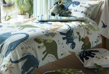 Braxton's new bedroom / He wants blue walls with a dinosaur theme / by Lauren Simmons