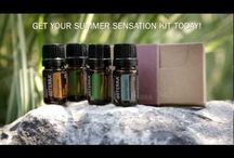dōTERRA Summer Sensation Recipes / Earn this delightful kit containing basil, cilantro, black pepper, and tangerine (retail value $81.61) absolutely FREE by placing a 200PV order. NOW EXTENDED THROUGH JULY 31, 2012! / by dōTERRA Essential Oils {Official Page}