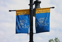 Widener Athletics / Learn more about the different sport teams we offer at Widener. http://www.widenerpride.com/index.aspx / by Widener Pride