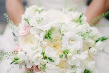 Wedding / by Cindy Galvin