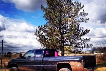 It's a country girl thing(; / by Taylore Lengal