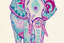 The Elephant in the Room / by Kevia Wright