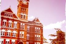 Auburn University / by A-O Tourism