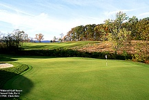 Golf / by Pennsylvania Ski Areas Association
