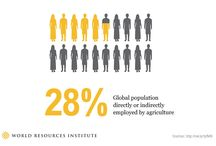 World Food Security / by YPARD