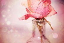 Pretty in Pink... / Love pink!! / by Judy Aldrich