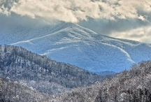 Smoky Mountains in Winter / by William Britten