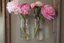 Home decor / by Holly Haak