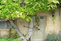 Picturesque Portals / by Deb Korbel