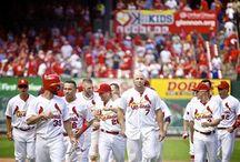 St Louis Cardinals / by Melissa Swindle