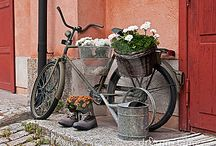 I Love Old Bicycles / by Deb Martin-Webster
