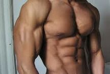 Body building/ Fitness / by Bram Ernens