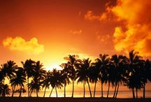 Sunset/Nature / by Dianne Shiozaki