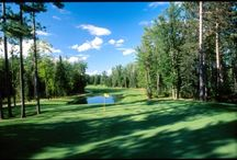 Golf Tips for RVers / For avid golfers the only thing better than RVing Full Time are the days they pull into the RV Resort that is right on the golf course. . .now THAT is the life. / by rentzio