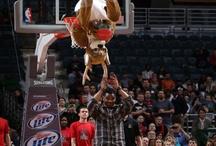 Milwaukee Bucks / by WiscTimes