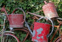 Watering cans / by Deb Bahr