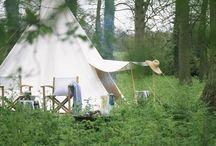 Camping in the backyard / by Derrill Swearingen