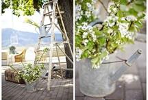Gardens / Entertaining / Deck / by Joshua Benbrook