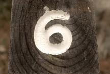 6 wards...eternally 1 / by Gina Ward