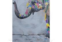 Elephants / by Angelandspot