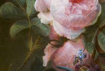 Paintings / by Carol Massey