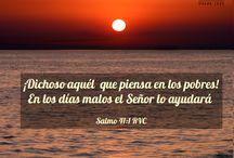 Versiculos sobre Pobreza y Justicia / by Sociedad Biblica Chilena