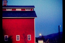 awesome architecture / by Susan Hausser