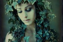 Under the Ivy / by Tracey