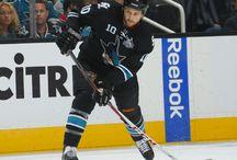 2013-14 Sharks / by San Jose Sharks