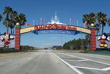Walt Disney World / by See Ann Save