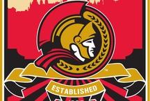 Ottawa Senators / Hockey / by NiceRink.com
