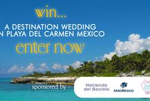 Wedding Destinations & Honeymoons / by WedAlert Network