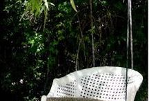 In My Pretty Garden / by Cynthia Waring Holbrook