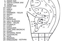 Ear (auricular) acupuncture  / Ear (auricular) acupuncture (stapling) / by Lori Wichman