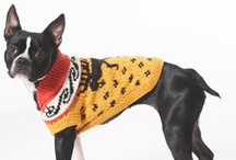 Free Patterns for Pets / by Bernat Yarns