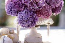 Wedding flowers / by Chelsea Roberts