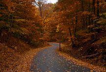 Beautiful Upstate New York  / by Jo Reyes