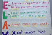 Fifth Grade Anchor Charts & Graphic Organizers / by Auntie Sawn