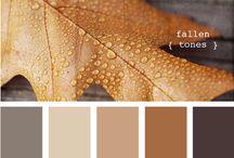 Color Palette / by Misti Ryal