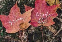 Wedding: Fall Scheme / by Christiana Thorpe