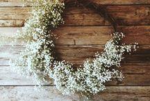 Wreaths / by Jenna McKinley