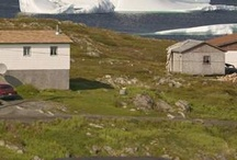 Beautiful Newfoundland!!! / by Stephanie Coleman