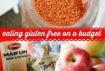 gluten free/egg allergy / by VaDonna Combs