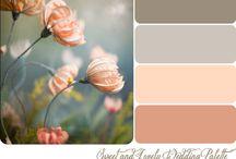 Color Palette / by Yannie